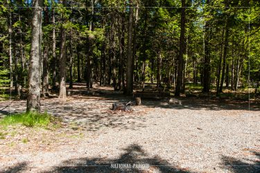 Blackwoods Campground in Acadia National Park in Maine