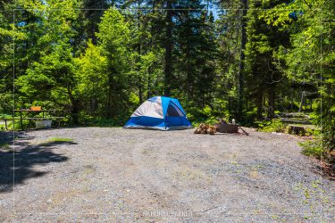 Seawall Campground in Acadia National Park in Maine