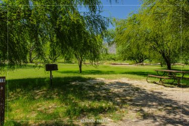 Cottonwood Campground in Big Bend National Park in Texas