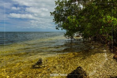 Convoy Point in Biscayne National Park in Florida
