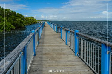 Convoy Point Trail in Biscayne National Park in Florida