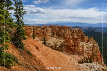 Black Birch Canyon in Bryce Canyon National Park in Utah