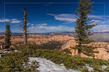 Bryce Point in Bryce Canyon National Park in Utah