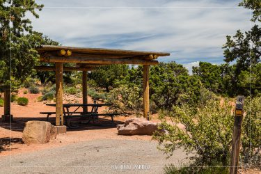 Willow Flat Campground in Canyonlands National Park in Utah