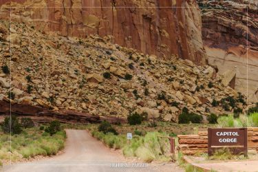 Capitol Gorge Road in Capitol Reef National Park in Utah