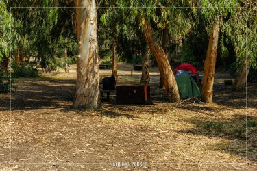 Scorpion Valley Campground in Channel Islands National Park in California