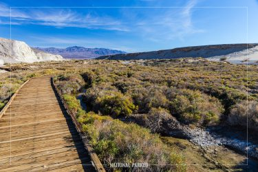 Salt Creek Trail in Death Valley National Park in California