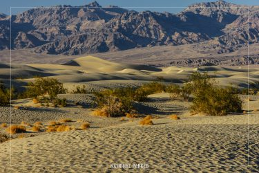 Sand Dunes in Death Valley National Park in California