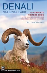 Denali National Park: The Complete Guide