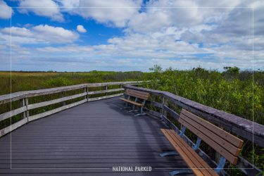 Anhinga Trail in Everglades National Park in Florida