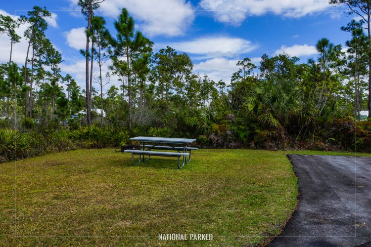 Long Pine Key Campground in Everglades National Park in Florida