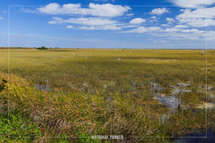 Pa-Hay-Okee in Everglades National Park in Florida