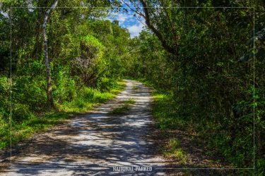 Rowdy Bend Trail in Everglades National Park in Florida