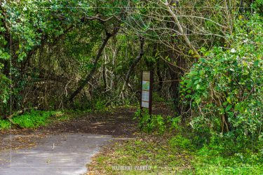 Snake Bight Trail in Everglades National Park in Florida