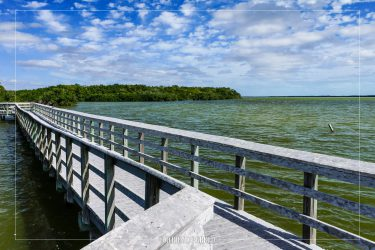 West Lake Trail in Everglades National Park in Florida