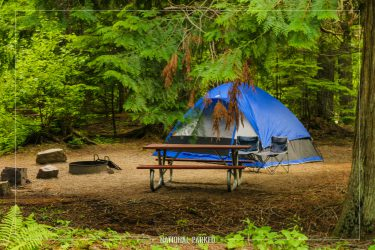 Avalanche Campground in Glacier National Park in Montana