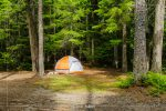Fish Creek Campground in Glacier National Park in Montana
