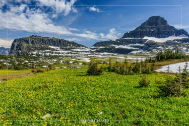 Logan Pass in Glacier National Park in Montana