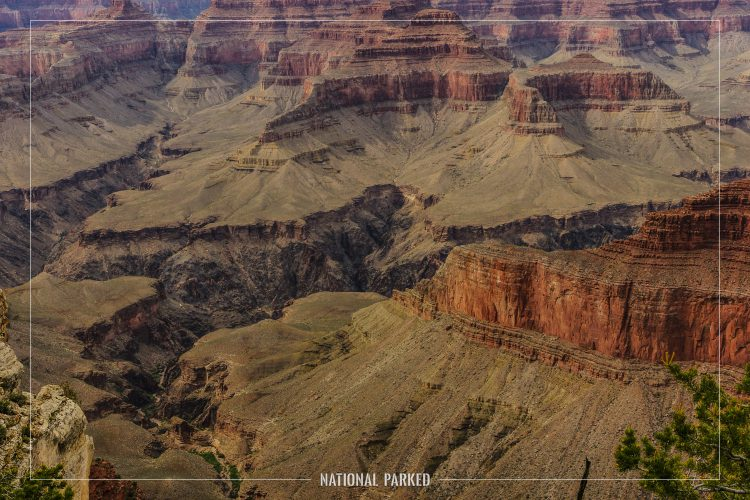 Monument Creek Vista in Grand Canyon National Park in Arizona