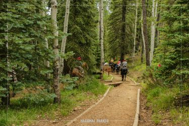 North Kaibab Trail in Grand Canyon National Park in Arizona
