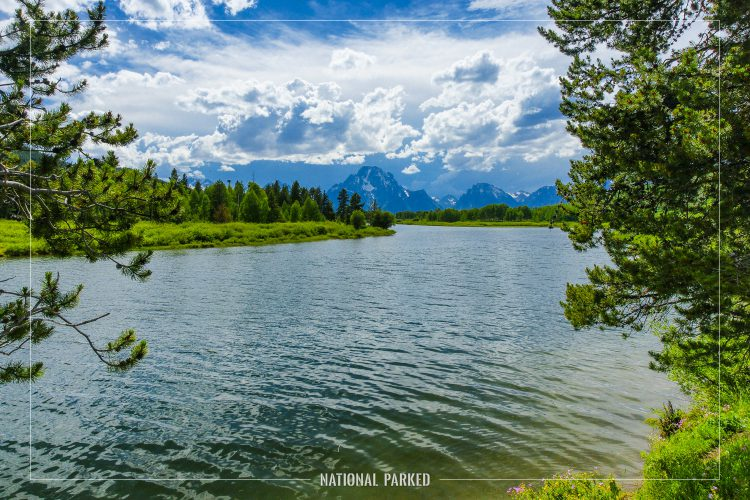 Oxbow Bend Turnout in Grand Teton National Park in Wyoming
