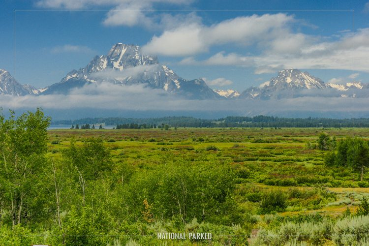 Willow Flats Overlook in Grand Teton National Park in Wyoming
