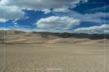 Dune Field in September in Great Sand Dunes National Park in Colorado