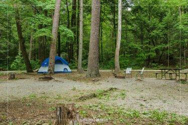 Abrams Creek Campground in Great Smoky Mountains National Park in Tennessee