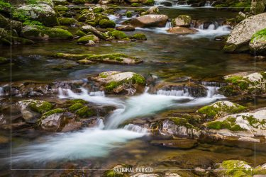 Big Creek in Great Smoky Mountains National Park in North Carolina