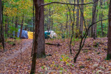 Big Creek Campground in Great Smoky Mountains National Park