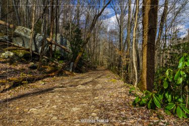 Big Creek Trail in Great Smoky Mountains National Park in North Carolina