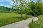 Cades Cove Loop Road in Great Smoky Mountains National Park in Tennessee