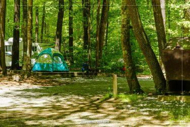 Cataloochee Campground in Great Smoky Mountains National Park in North Carolina