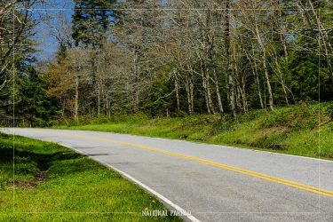 Clingman's Dome Road in Great Smoky Mountains National Park in North Carolina