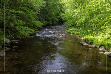 Deep Creek in Great Smoky Mountains National Park in North Carolina