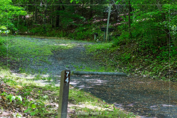 Deep Creek Campground in Great Smoky Mountains National Park in North Carolina