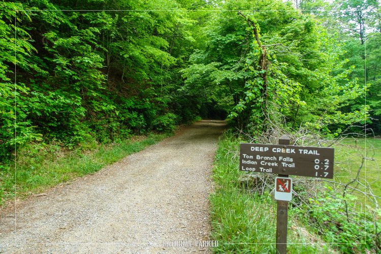 Deep Creek Trail in Great Smoky Mountains National Park in North Carolina