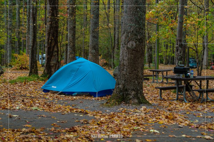 Elkmont Campground in Great Smoky Mountains National Park in Tennessee