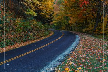 Heintooga Ridge Road in Great Smoky Mountains National Park in North Carolina