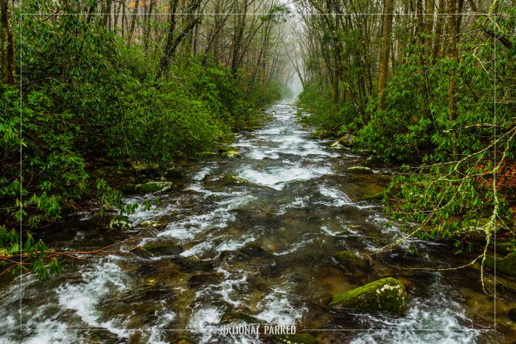 Oconaluftee River in Great Smoky Mountains National Park in North Carolina