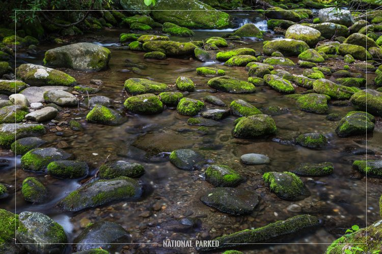 Roaring Fork in Great Smoky Mountains National Park in Tennessee