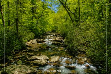 Walker Camp Prong in Great Smoky Mountains National Park in Tennessee