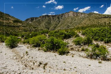 McKittrick Canyon Trail in Guadalupe Mountains National Park in Texas