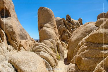 Arch Rock Nature Trail in Joshua Tree National Park in California