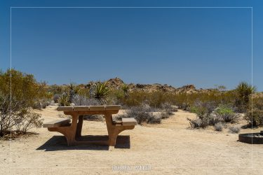 Cottonwood Campground in Joshua Tree National Park in California