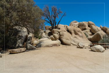 Hidden Valley Campground in Joshua Tree National Park in California