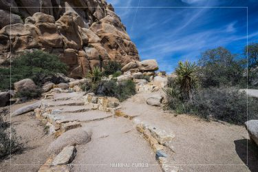 Hidden Valley Nature Trail, Joshua Tree National Park, California