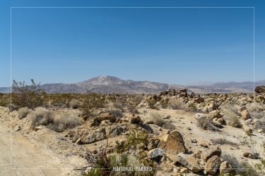 Porcupine Wash in Joshua Tree National Park in California