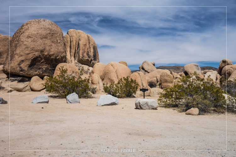 White Tank Campground in Joshua Tree National Park in California