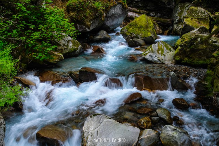 Ladder Creek in Ross Lake National Recreation Area in Washington